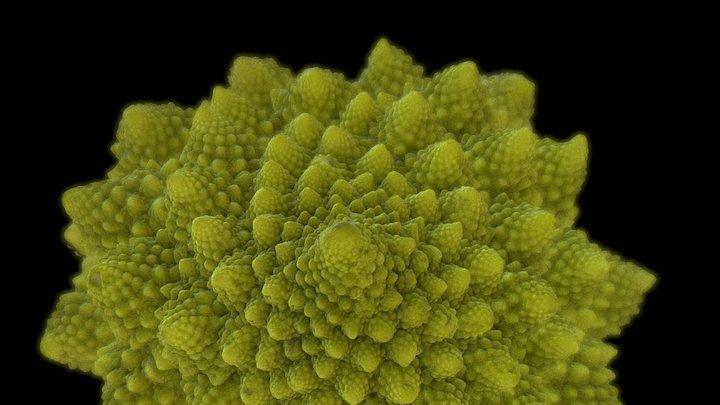 Fractal Romanesco Top 3D Model