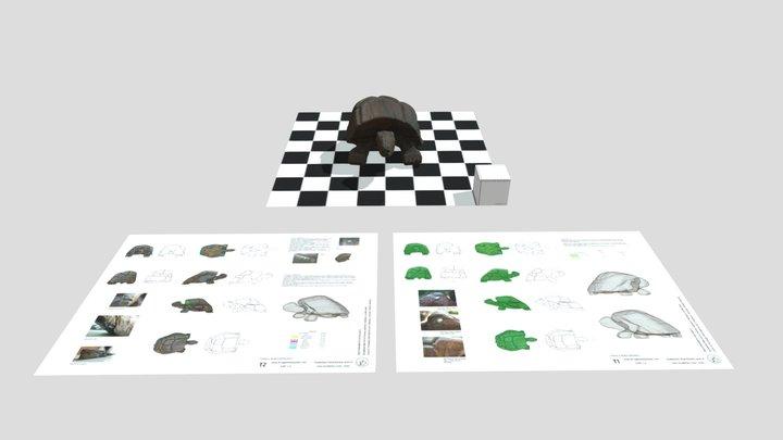 Scultura lignea di tartaruga 3D Model
