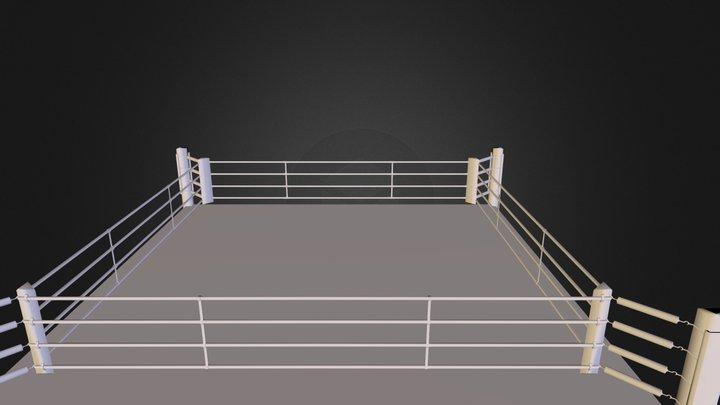 Ring Kick Boxing 3D Model