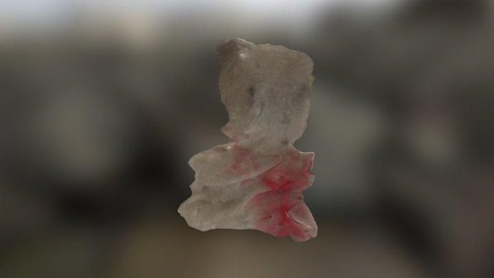 3DSOM_advanced_bear-2 3D Model