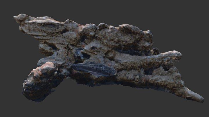 RK17 F0001 Concretion - Stage 2 3D Model