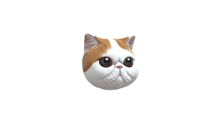 Exotic Short Hair Cat pet model jewellery 3D Model