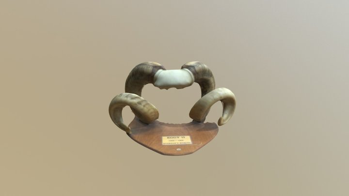 Eggy The Ram's Horns 3D Model