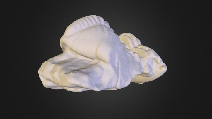 bvb 3D Model