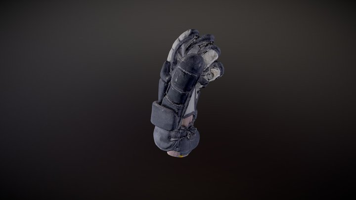 HEMA Glove - 3D Scan 3D Model