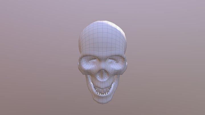 Skull Retopo 3D Model