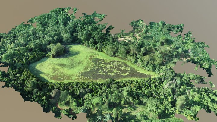 Lac Karihani - Tsingoni - Mayotte 2018 3D Model
