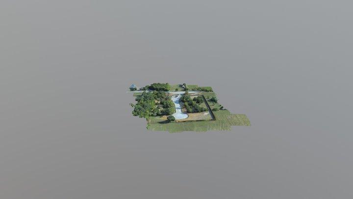 Matthews CT Simplified 3d Mesh 3D Model