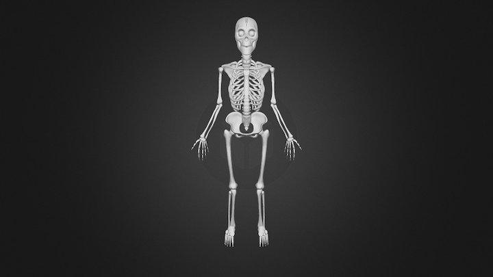 My Skeleton - Self Portrait 3D Model