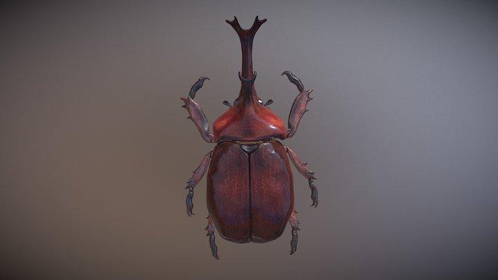 Trypoxylus Dichotomus Japan rhinocerous beetle 3D Model