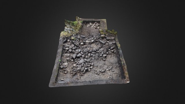 Lochore tower trench 3D Model
