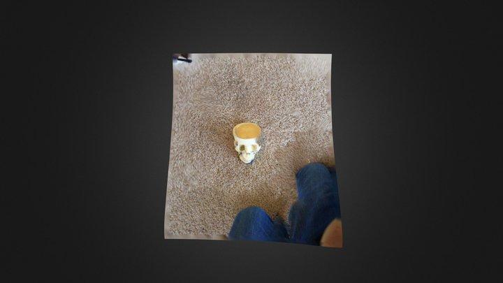 Skully! 3D Model