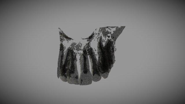 Teeth Ar Nazeh 3D Model