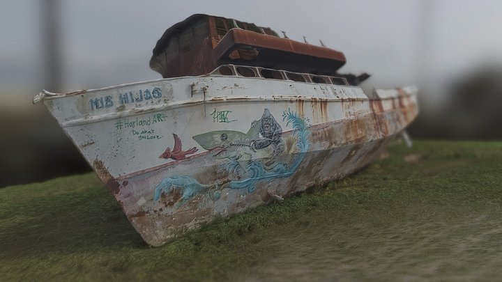 Abandoned washed up boat (photogrammetry) 3D Model