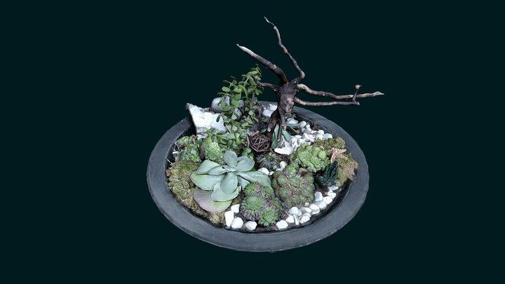 Planty Decor 3D Model