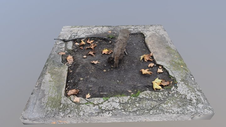 Pavement with tree 3D Model