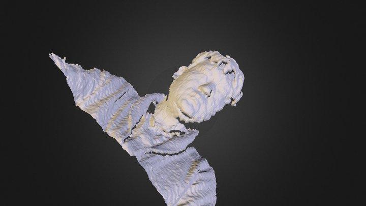 MeshedReconstruction 3D Model