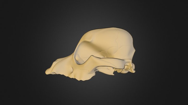 Test_03 3D Model