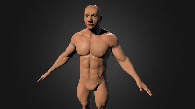 GPF 1 Male Anatomy Study 3D Model