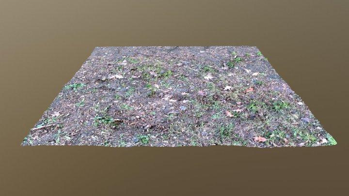Ground 3D Model