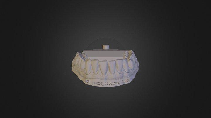 Template: Antagonist 3D Model