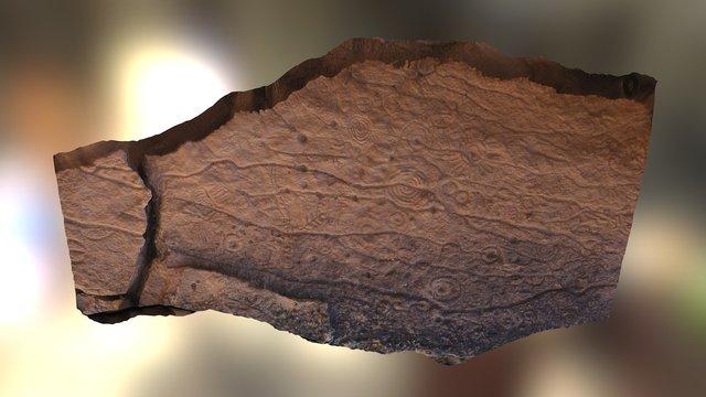 Clark Co Petroglyph Slab