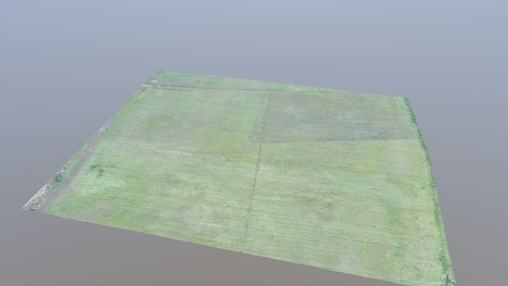 RGB mapping for agricoltural assessment 3D Model