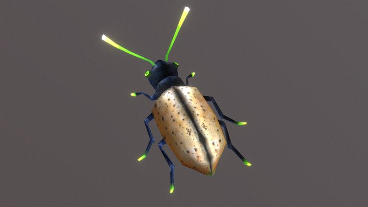 LowPoly Beetle 3D Model