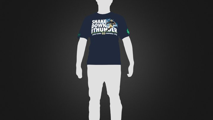 THE SHIRT + SILHOUETTE 3D Model