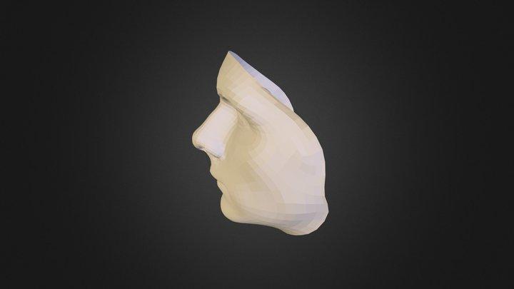 Face Modeling 3D Model