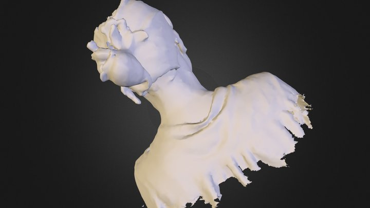Tania Sienko simplified.obj 3D Model