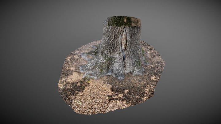 tronc d'arbre 3D Model