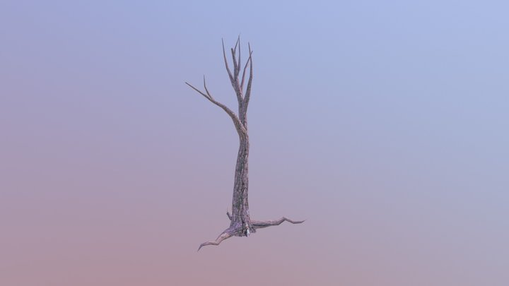 """Tree"" 3D Model"