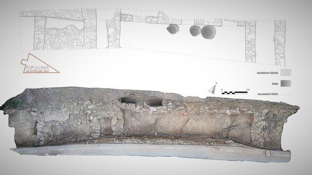 Excavation area of the House of Seeds 3D Model