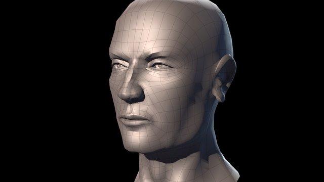 Male Head Sculpt LowPoly 3D Model