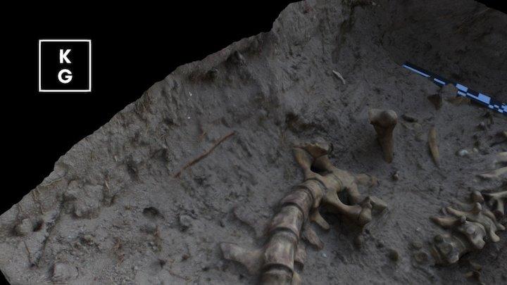 Gator Burial High Med750k Blender 3D Model