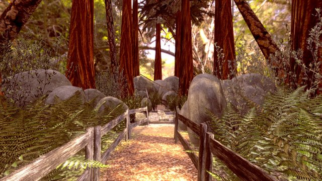 a hike through the Redwood Forest 3D Model