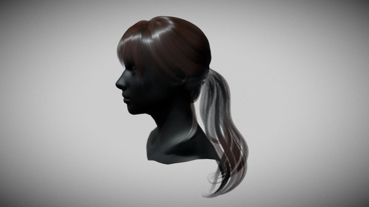 Hair For Ray II Demo 3D Model