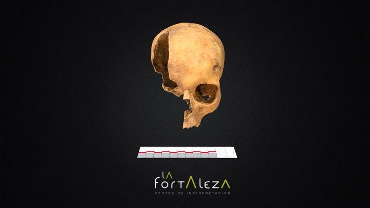 Cráneo La Fortaleza (con trauma) 3D Model