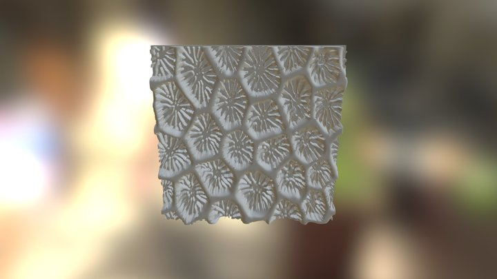 Seamless Coral Pattern 3D Model