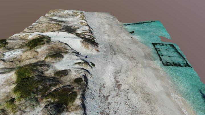 Robbs Jetty Dune System 3D Model