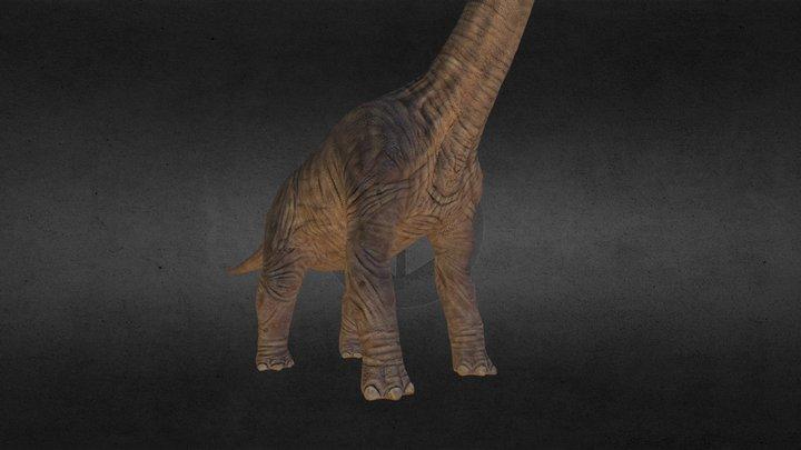 brachiosaurus.obj 3D Model