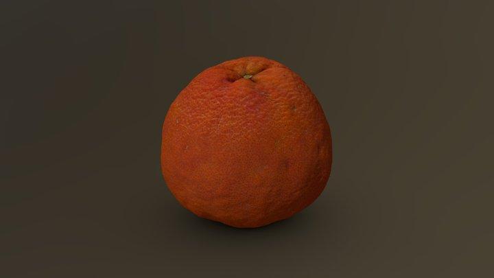 Grapefruit 03 3D Model