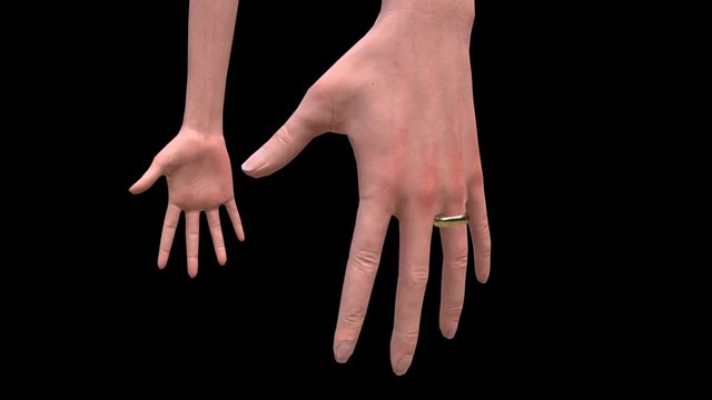 Notes of Obsession: Character Hands 3D Model