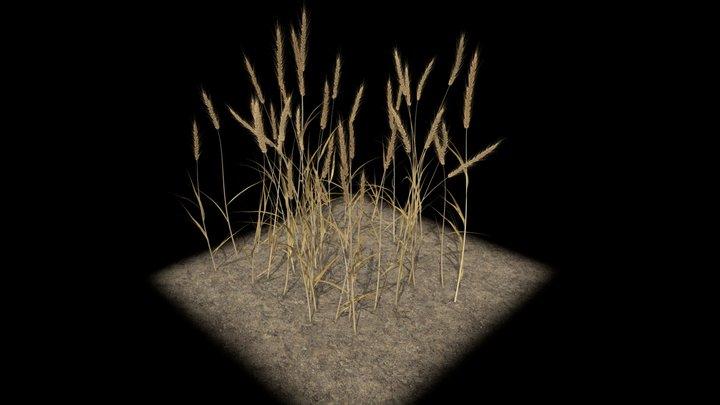 Wheat Field for AR 3D Model