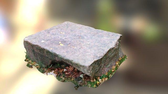 Rock in Tallin 3D Model