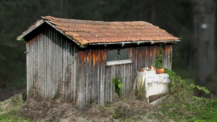 Hütte zwischen den Streuobstwiesen - shed 3D Model