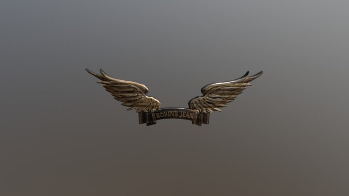 Robins Jean - Wings Logo 3D Model