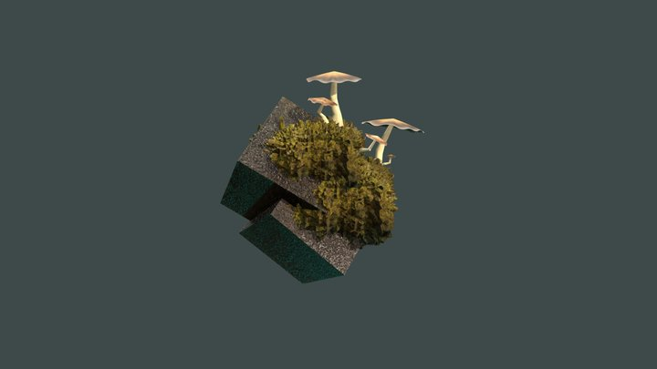 Test cube and mushrooms 3D Model