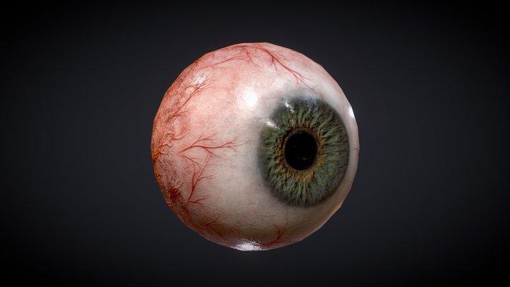 Just an eye! 3D Model